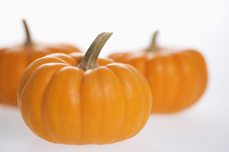 Three pumpkins on white. stock photography