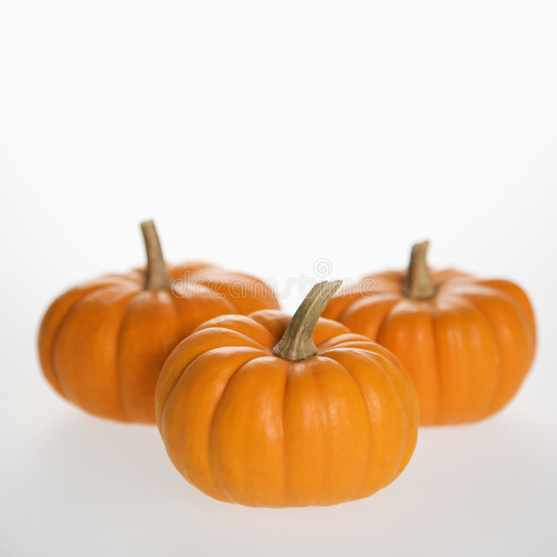 Three pumpkins on white. royalty free stock images