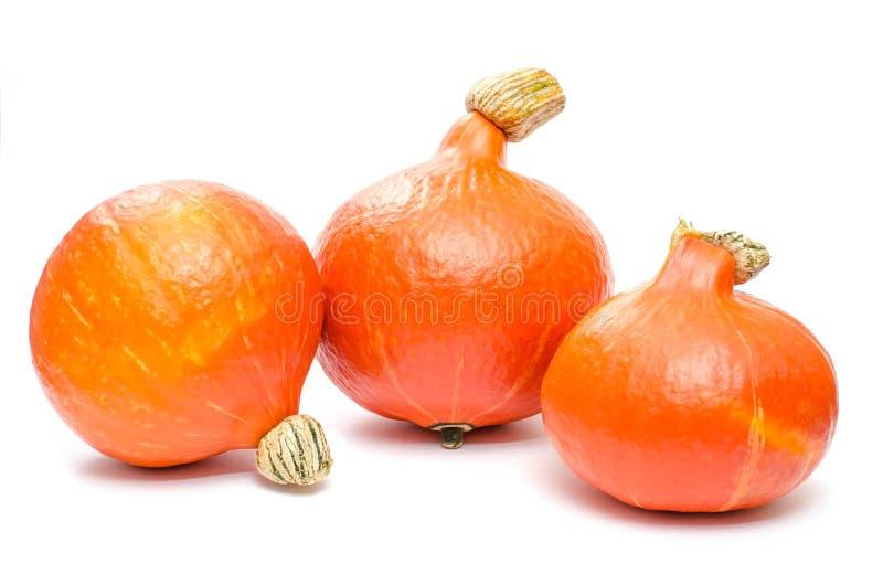 Download Three pumpkins stock image. Image of hokkaido, orange - 34270277