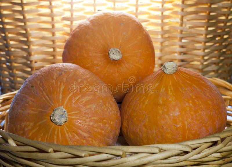 Three pumpkins in a wicker basket royalty free stock photography