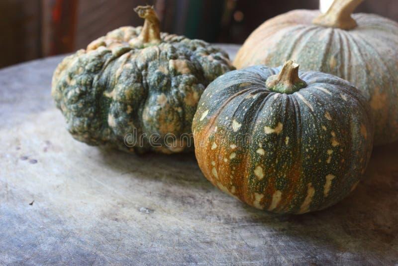 Three pumpkins on a wooden floor. stock photos