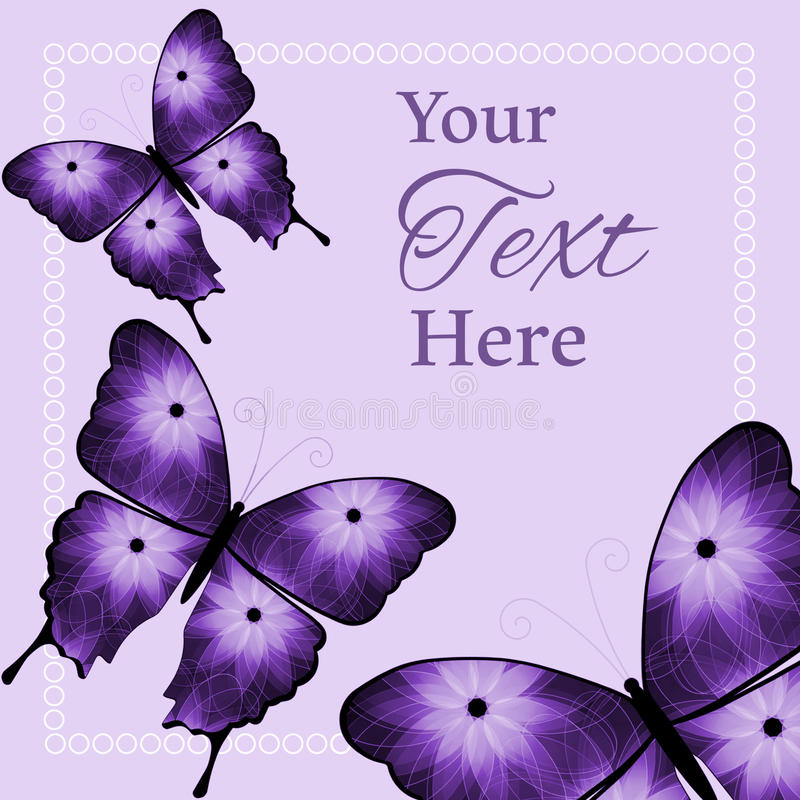 Three Purple and Black Flower Butterflies Background stock photography