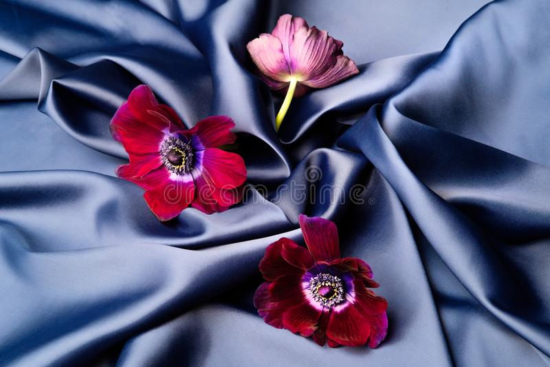 Violet flowers lie on a blue shiny silk wavy fabric. Three purple lilac blue flowers lie on a blue shiny silk wavy fabric. Folded fabric, background, wrinkles stock image