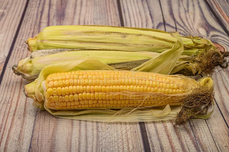 Three raw ears of corn on a wooden table. Healthy diet. Fitness diet. For a sweet treat. Close up stock images