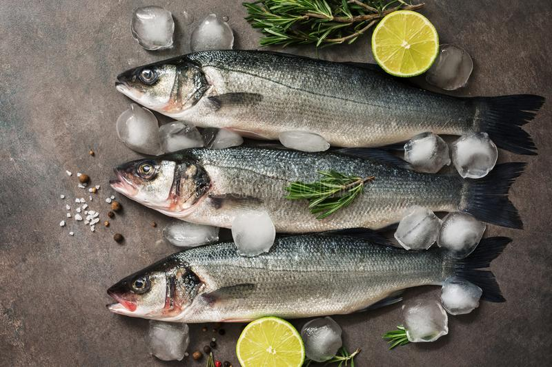 Three raw sea bass fish with rosemary, lime and ice cubes on a dark background, flat lay. Top view.  royalty free stock photo