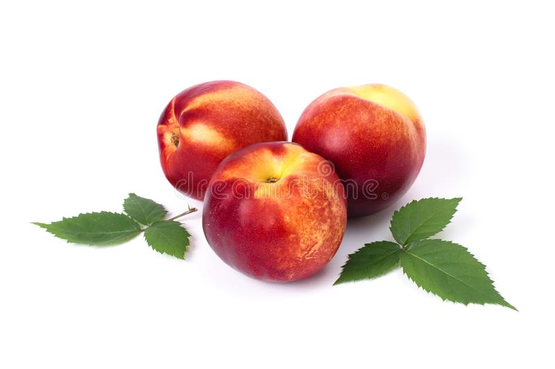 Three red bald peaches on abelom background.  Peaches closeup red color stock photos