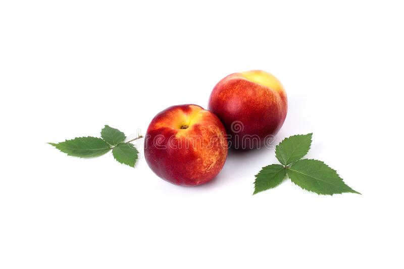 Three red bald peaches on white background. Peaches closeup red color. stock image