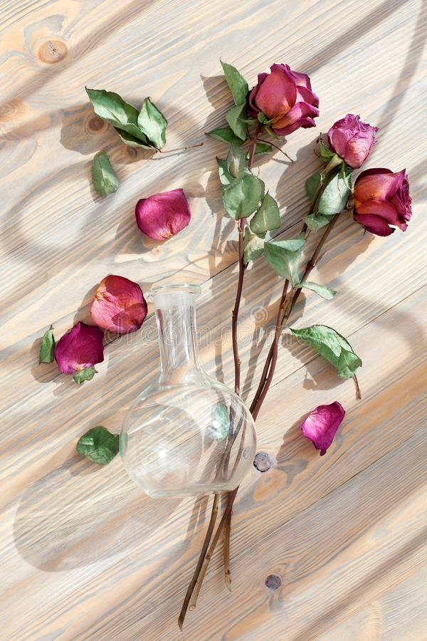 Three red roses, scattered flower petals, green leaves, glass round vase on wooden background top view closeup, floral arrangement royalty free stock photos