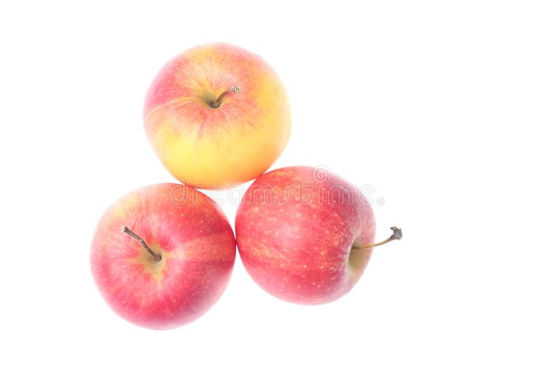 Three ripe apples royalty free stock photo
