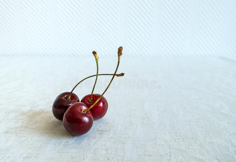 Three Ripe Fresh Red Cherries together on a white background in a summer day royalty free stock images