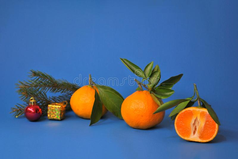 Three ripe juicy tangerines, a branch of spruce and a pair of Christmas toys on a blue background. Three ripe juicy mandarins, a branch of spruce and a pair of stock image