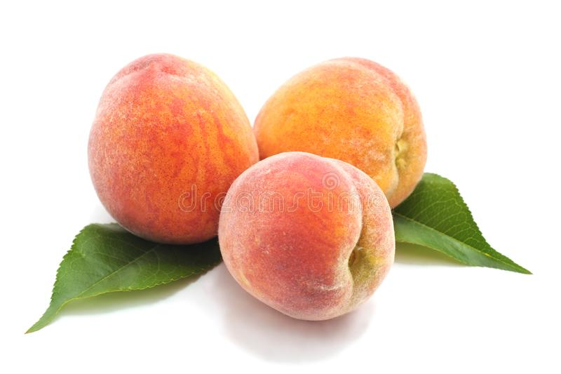 Three ripe peaches. stock photos
