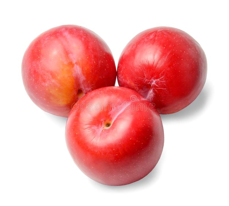 Three ripe red round plums isolated on white. Close-up.Top view. stock photo