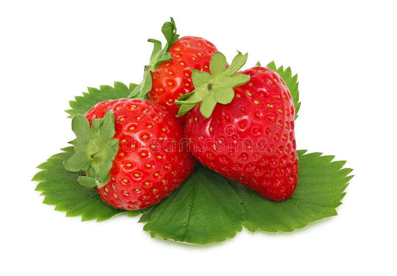 Three ripe strawberries with green leaves (isolated) stock photos