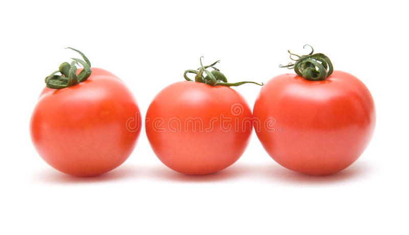 Three Ripy Red Tomatoes Stock Image