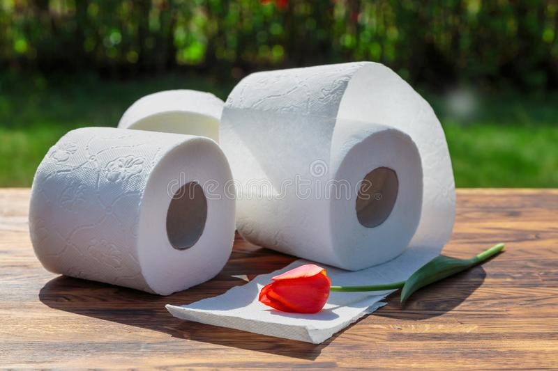 Three rolls of toilet paper royalty free stock images