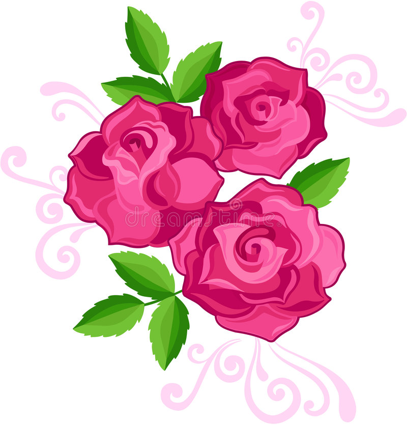 Download Three Roses Illustration stock vector. Image of spring - 5690723