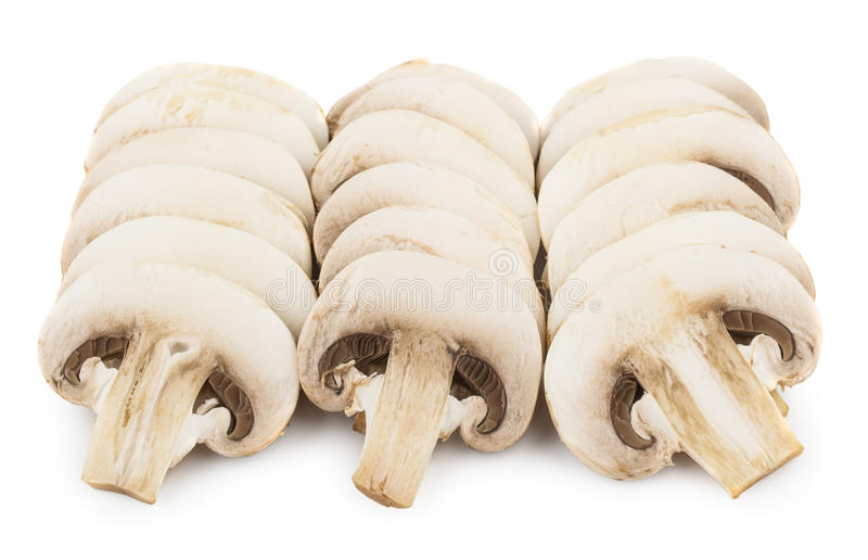 Three row of raw champignons isolated on white stock photos