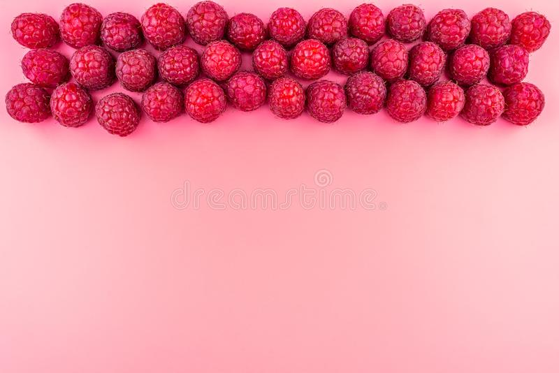 Three rows of raspberries stacked on top, top view, flat lay, isolated on a light pink background with copy space in the middle. royalty free stock photo