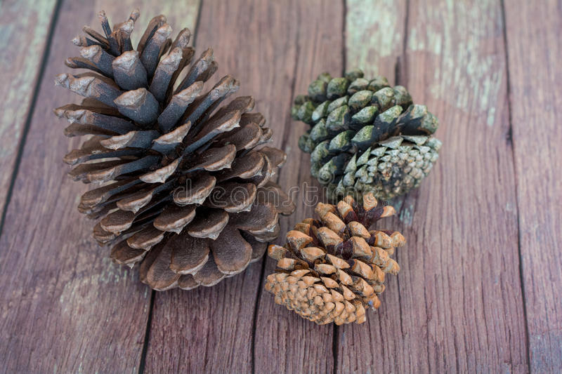 Three Rustic Pinecones on a Old Barn Board Floor royalty free stock photography