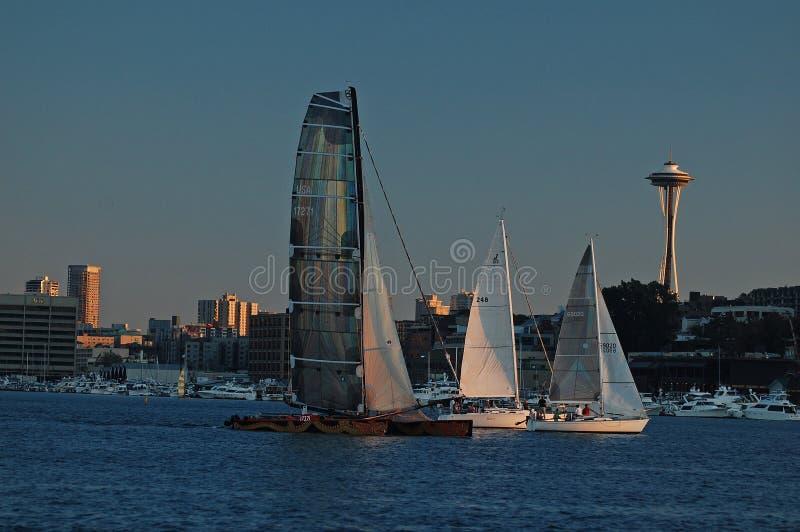Three sailboats race on Lake Union royalty free stock photo