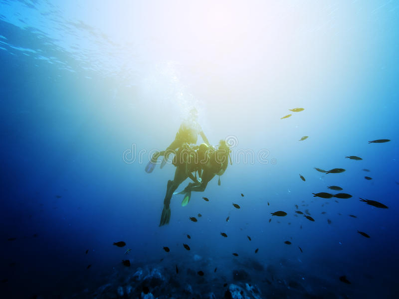 Three scuba divers. Swimming with fishes. Vintage effect. royalty free stock image