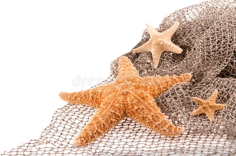 Three sea the stars of different sizes royalty free stock photo