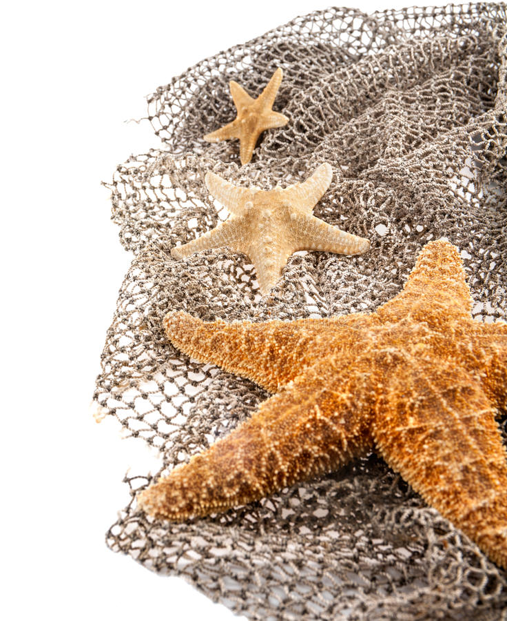 Three sea the stars of different sizes royalty free stock images