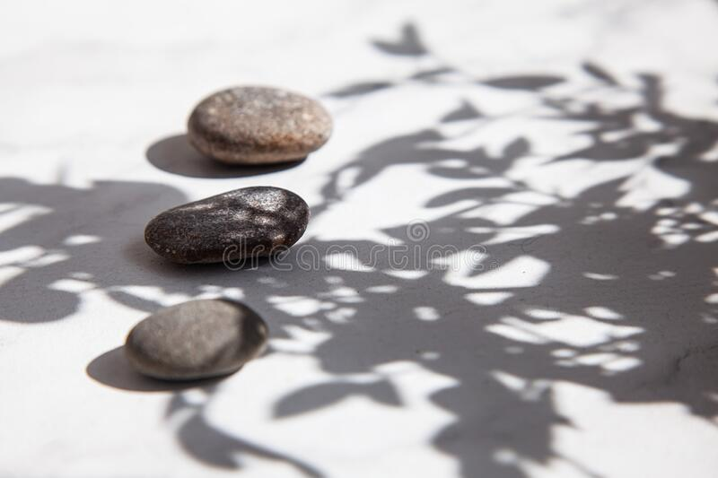 Three sea stones in the shade of leaves and sunlight on a white floor. Summer minimalism. Relaxation and rest stock image