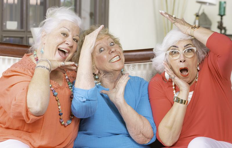 Three Senior Ladies Posing and smiling royalty free stock photo