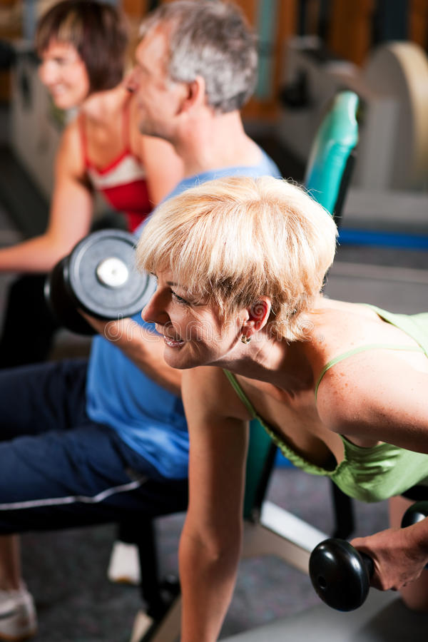 Download Three senior people in gym stock photo. Image of shape - 12738816