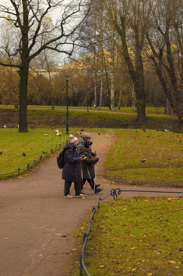 Three seniors engaged in Nordic walking in the Park in late autumn. Saint Petersburg, Russia - November 16, 2018: Three seniors engaged in Nordic walking in the royalty free stock image