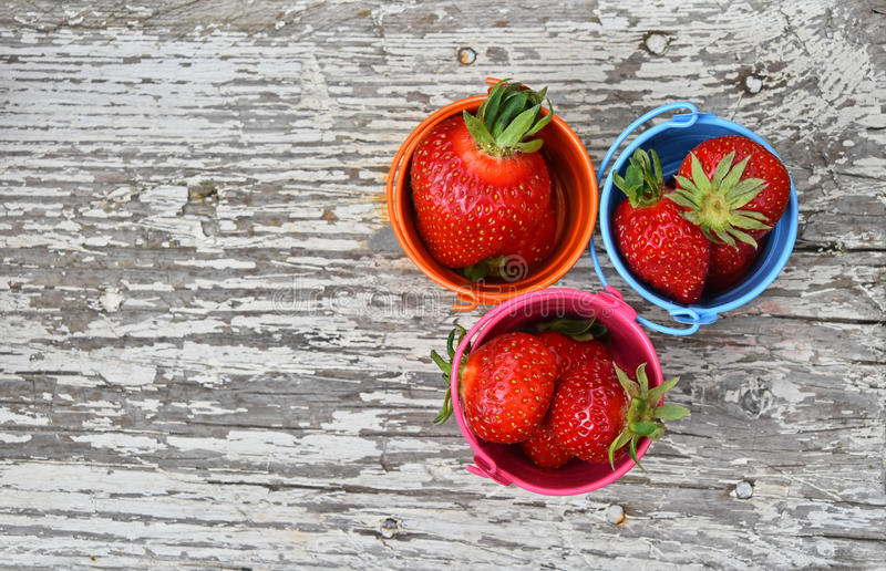 Three small colorful buckets full of strawberry. Three small colorful multicolored metal toy buckets full of red mellow strawberries on old vintage wooden table royalty free stock photos