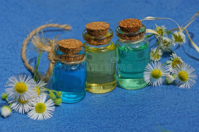 Three small glass bottles with oil among white daisies stock image