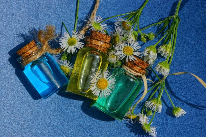 Three small glass bottles with oil among white daisies royalty free stock photos