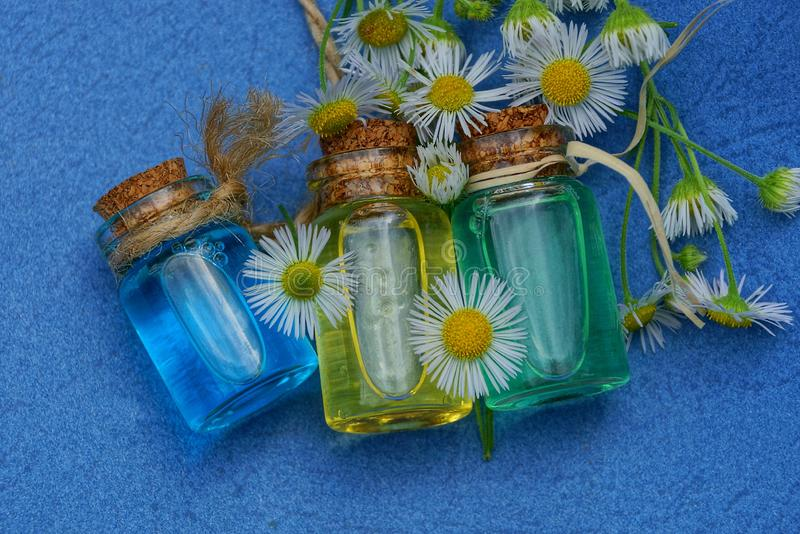 Three small glass bottles with oil among white daisies stock images