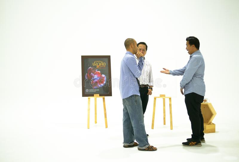 Three of smart asian men are discussing about beautiful siamese royalty free stock photo