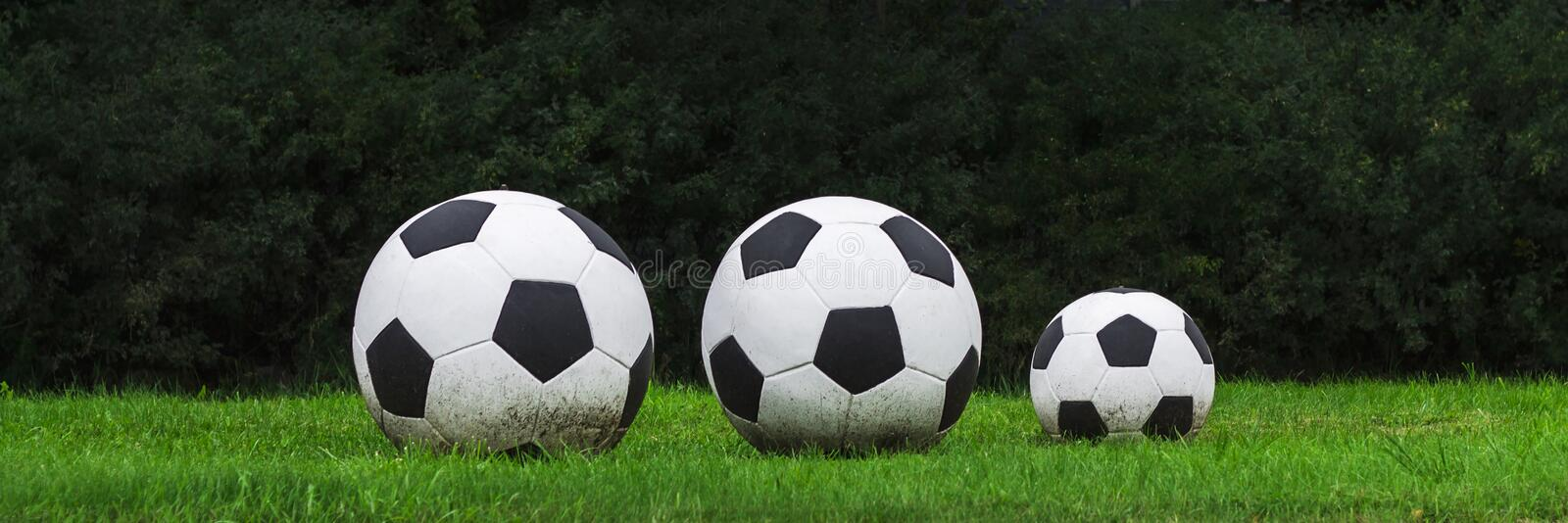 Three soccer balls stand in a row on the green grass. Sport game. banner stock photos