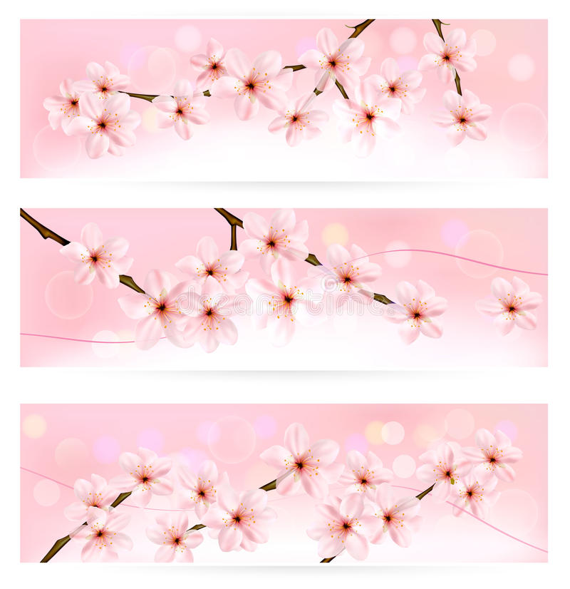 Download Three Spring Banners With Blossoming Tree Brunch Stock Photo - Image: 30069560