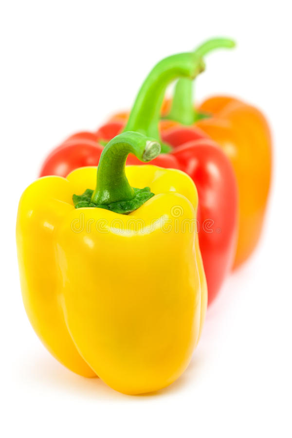 Three sweet peppers royalty free stock photos