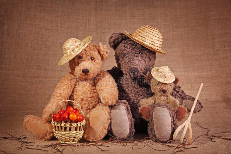 Three teddy bear stock image