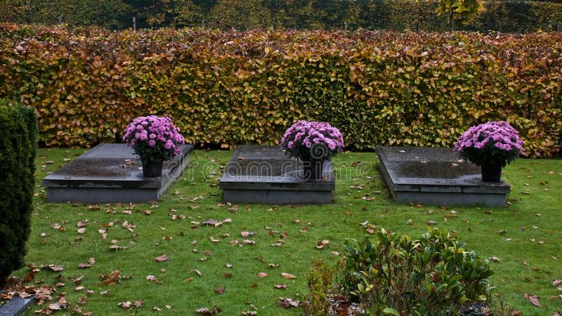 Three times flowers on a grave royalty free stock photography