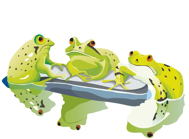 Three toad are talking on their stone. Three big toads are waiting an talking on their stone in pond stock illustration