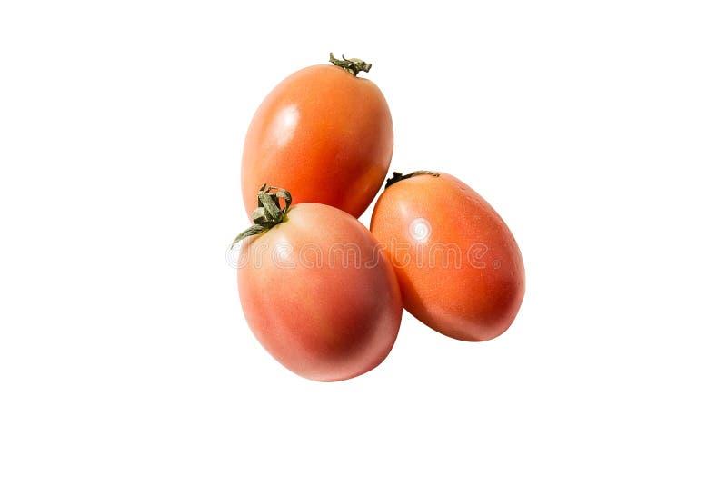 Three tomatoes isolated on white background royalty free stock photo