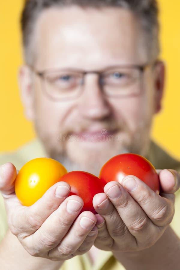 Three Tomatoes royalty free stock photography