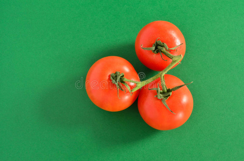 Three Tomatoes on Vine, Isolated on Green royalty free stock photos