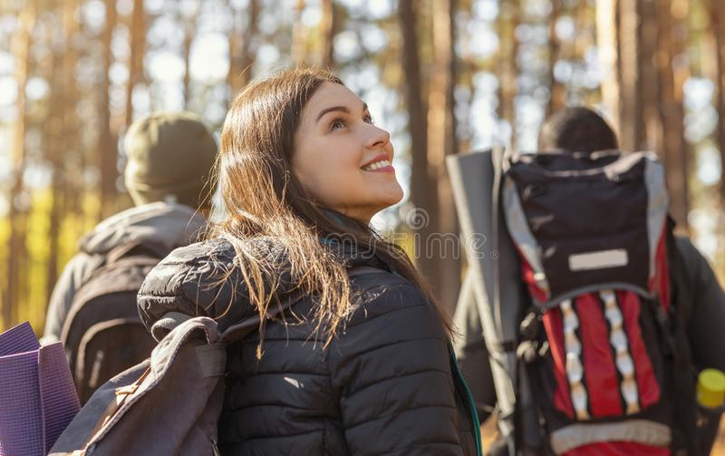 Three tourists hiking in autumn woods, girl looking around. Three tourists with backpacks hiking in autumn woods, girl looking around, back view royalty free stock images