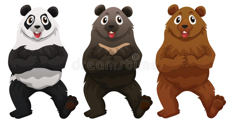 Three types of bears stock illustration
