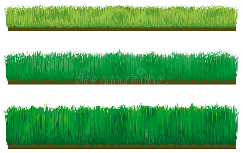 Download Three Types Of Border Grass Stock Vector - Image: 12697924