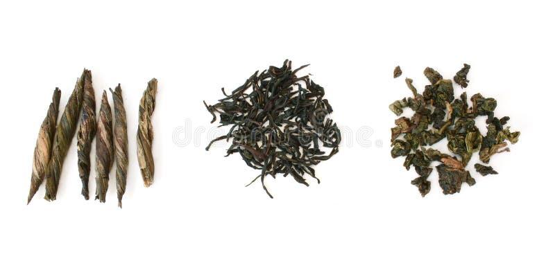 Three types of tea in row stock photography